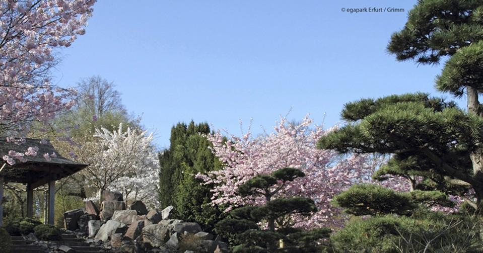 Der EGA-Park im Frühling