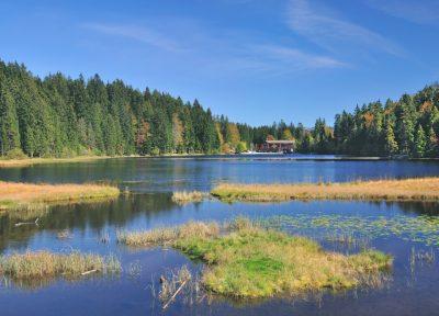 Großer Arbersee im Bayerischen Wald bei Bodenmais