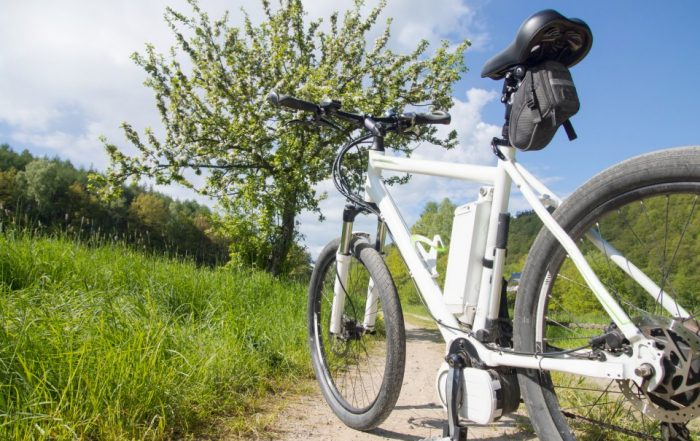 Elektro-Tourenfahrrad auf einem Feldweg im Frühling