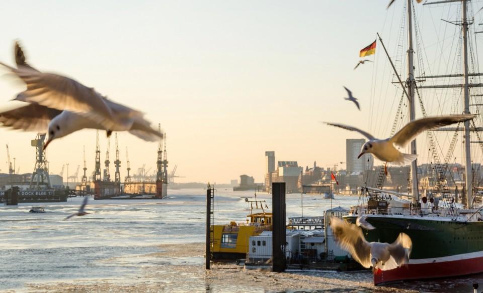 Hamburg am Elbufer mit Blick auf den Hafen und die Landungsbrücken