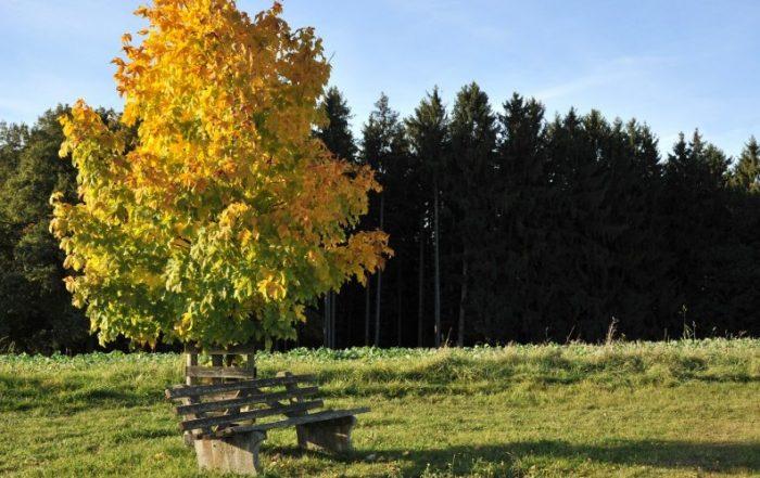 Rottal (Niederbayern)