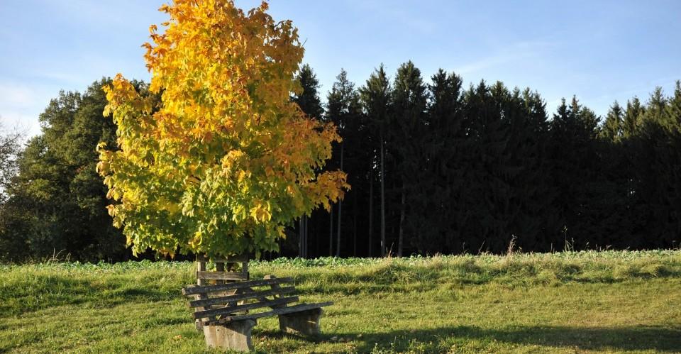 Rottal-in (Niederbayern)
