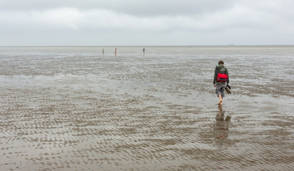 Wattwandern durch Nationalpark Wattenmeer