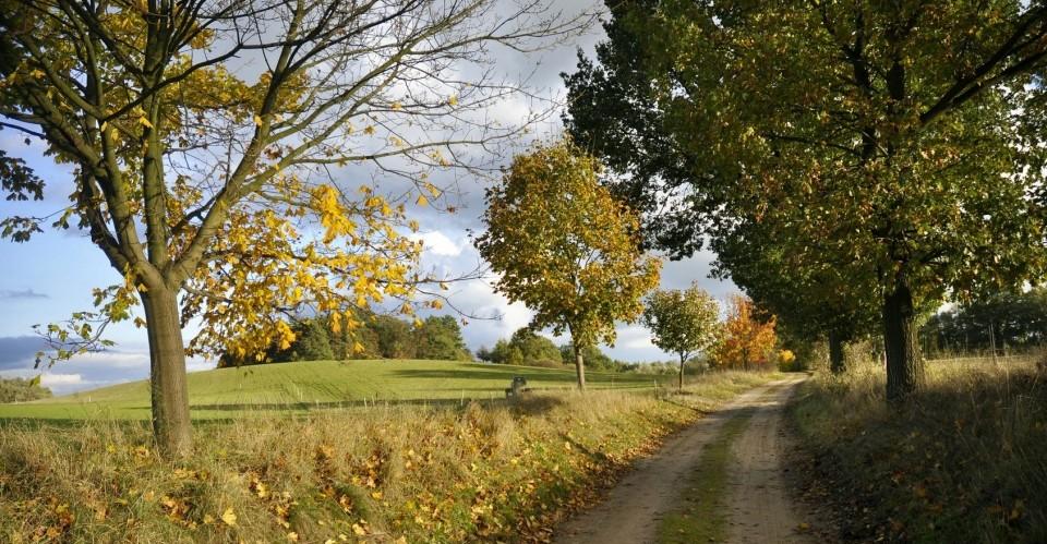 Das Biosphärenreservat in BarnimerLand ist das zweitgrößte in Brandenburg