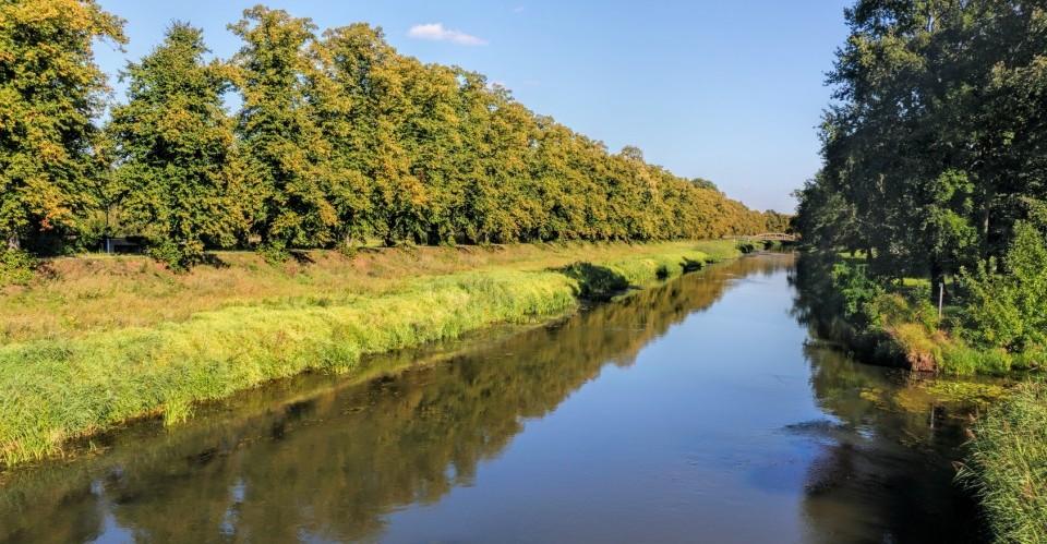 Schwarze Elster in der Elbe-Elster-Region in Brandenburg