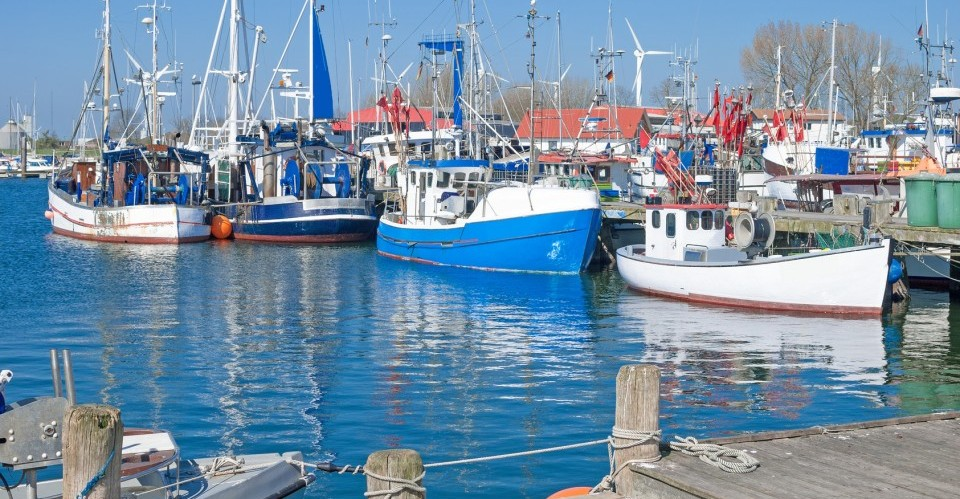 Fischerboote im Hafen auf der Ferieninsel Fehmarn an der Ostsee