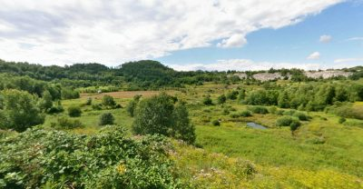 Die Grube Messel: Deutschlands Steinzeitfriedhof mit dem Urpferd