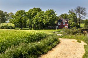 Haus im Grünen bei Travemünde