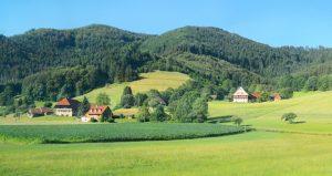 Landschaft im Südschwarzwald