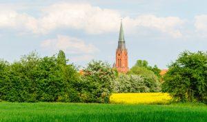 Nienburg an der Weser im Frühling