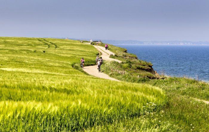 Wanderweg an der Brodtner Steilküste in der Nähe von Travemünde