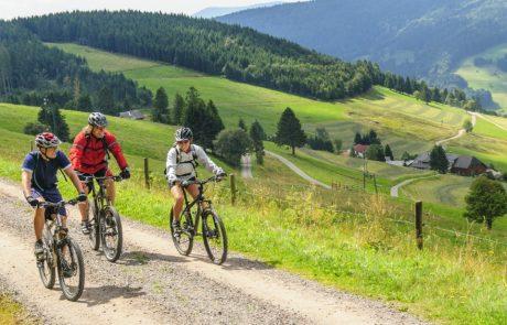 Mountainbiken rund um den Feldberg im Schwarzwald