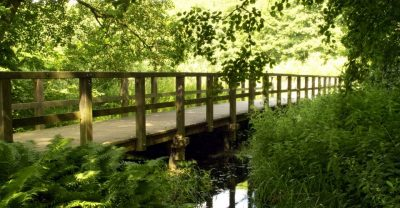 Uferweg am Schwielowsee in Ferch mit einer Holzbrücke zum Überqueren von Feuchtwiesen am Seeufer