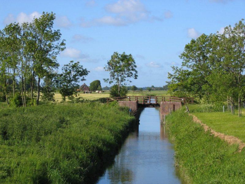 Marschland an der Weser