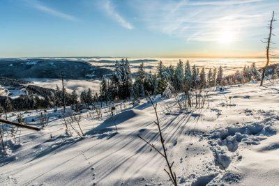 Schwarzwald im Winter am F eldberg: wintersport
