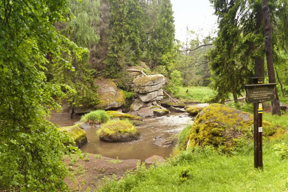 Am Goldsteig im Oberpfälzer Wald