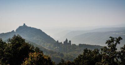 Drachenfels in Königswinter im Morgendunst
