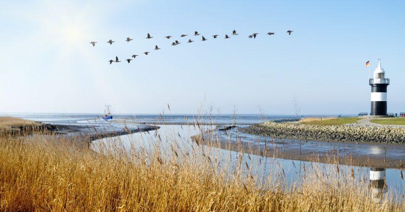Panorama am Wattenmeer