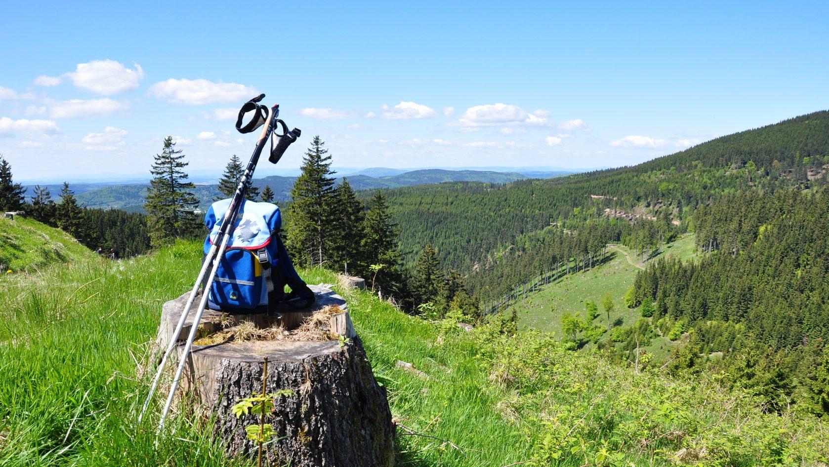 Thüringer Wald | Schiefergebirge