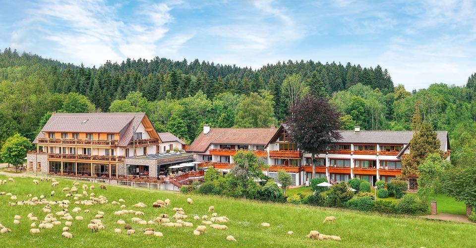 Hotel Grüner Wald****s - Freudenstadt