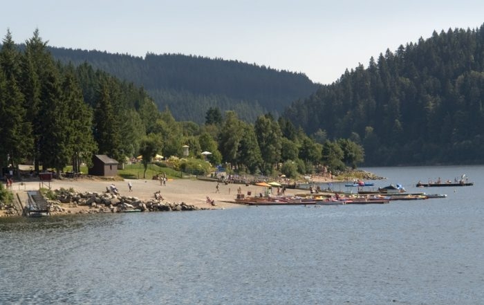 Sommer am Schluchsee