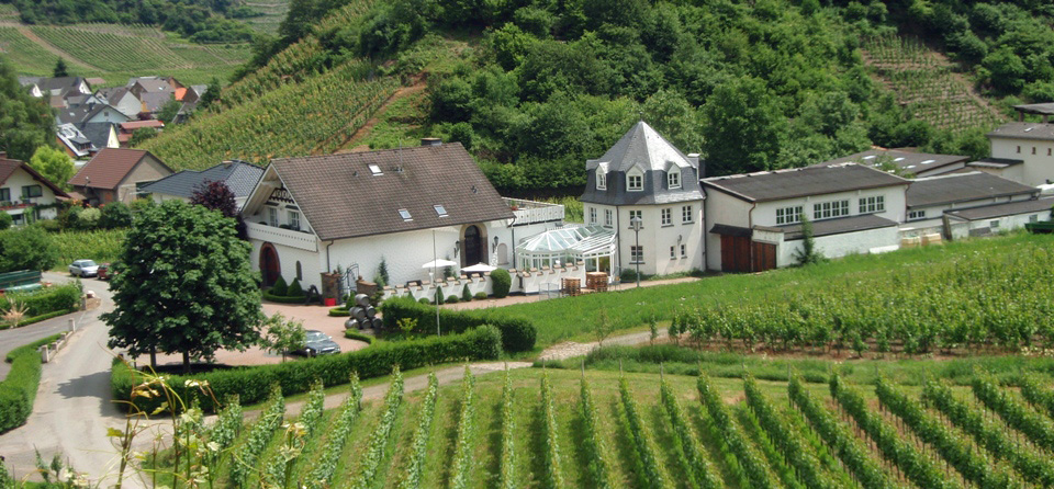 Weingut Deutzerhof in Mayschoß