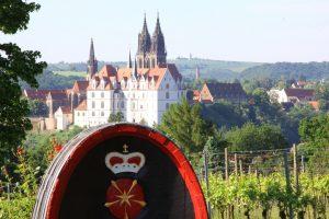 Blick vom Proschwitzer Weinberg auf die Meissener Albrechtsburg und den Dom
