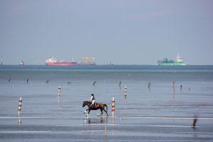 Duhner Wattrennen an der Nordsee