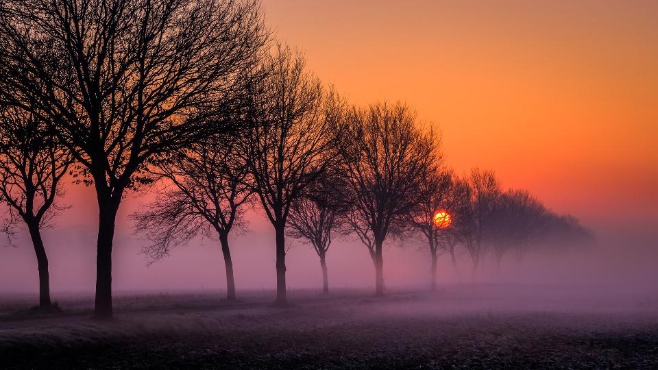 Nebliger Sonnenaufgang