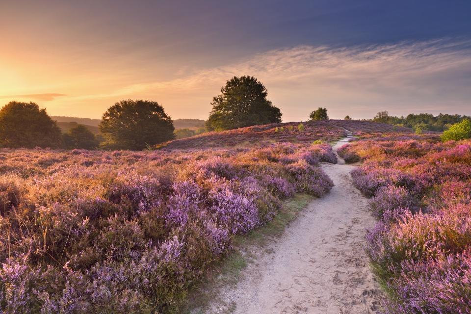 Romantischer Sonnenuntergang - Ausflugsziele für die ganze Familie - Reisetipps für den Spätsommer