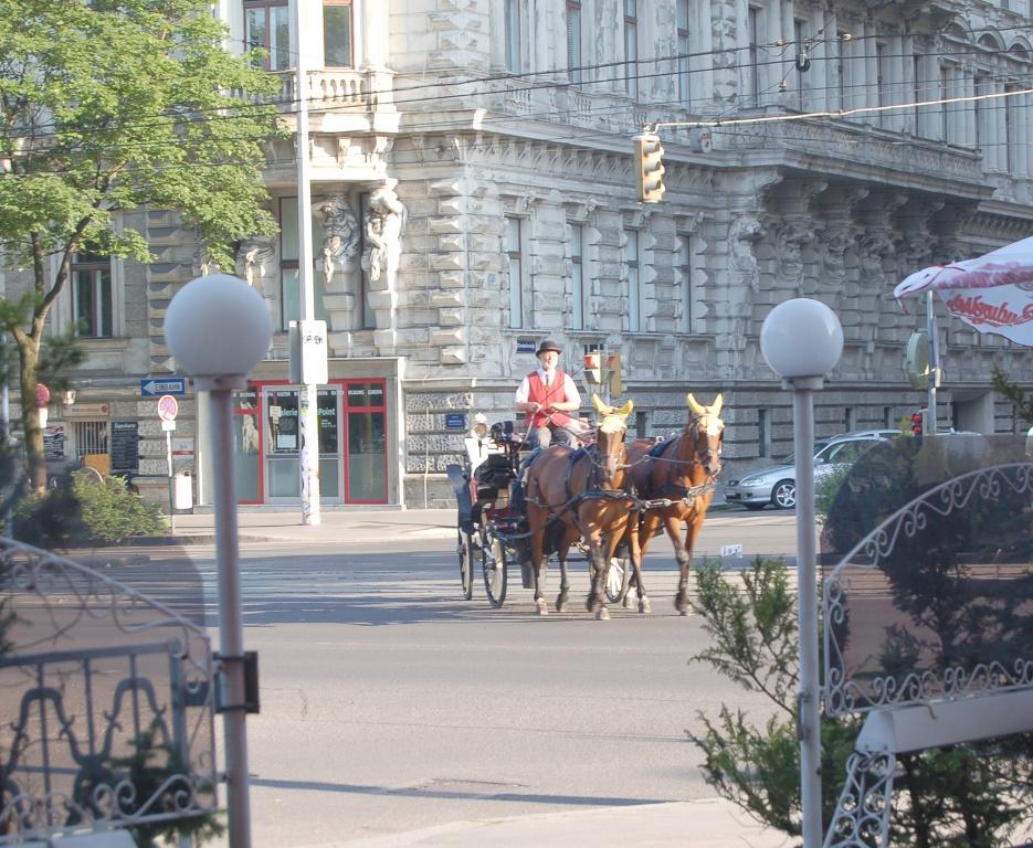 Fiaker an einem Nachmittag in Wien