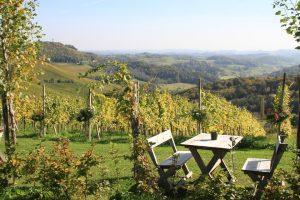 Weingarten, Österreich