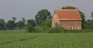 Altes Bauernhaus im Getreidefeld