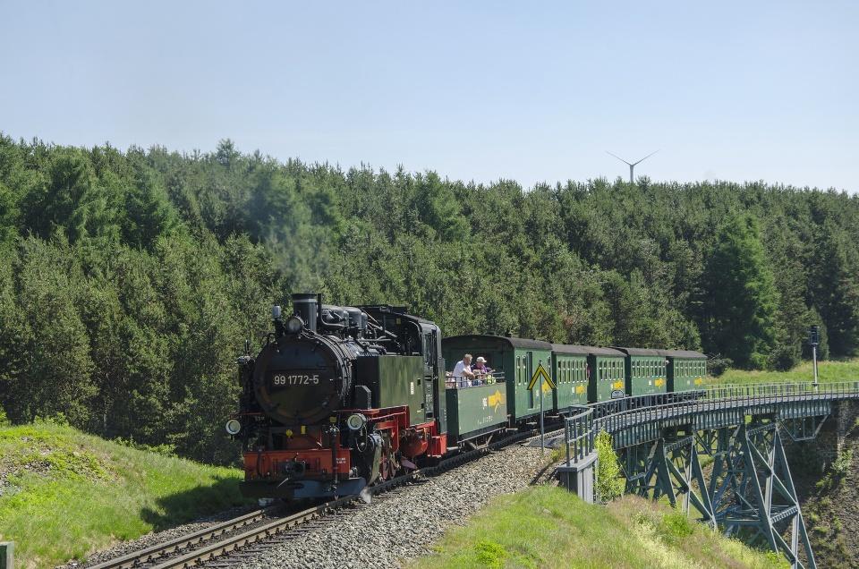 Dampfzug auf dem Viadukt in Oberwiesenthal