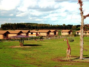 Masai Mara Lodges