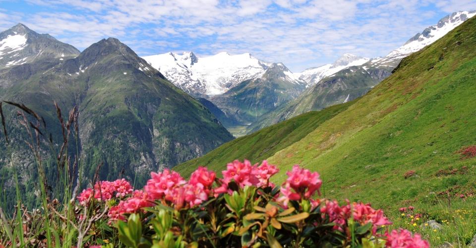 Im Nationalpark Hohe Tauern, Osttirol, Österreich