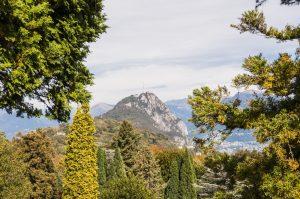 Wanderweg durch den Herbstwald am Luganer See