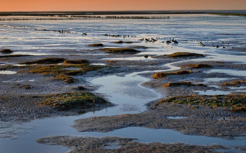 Wattenmeer, Ostfriesland