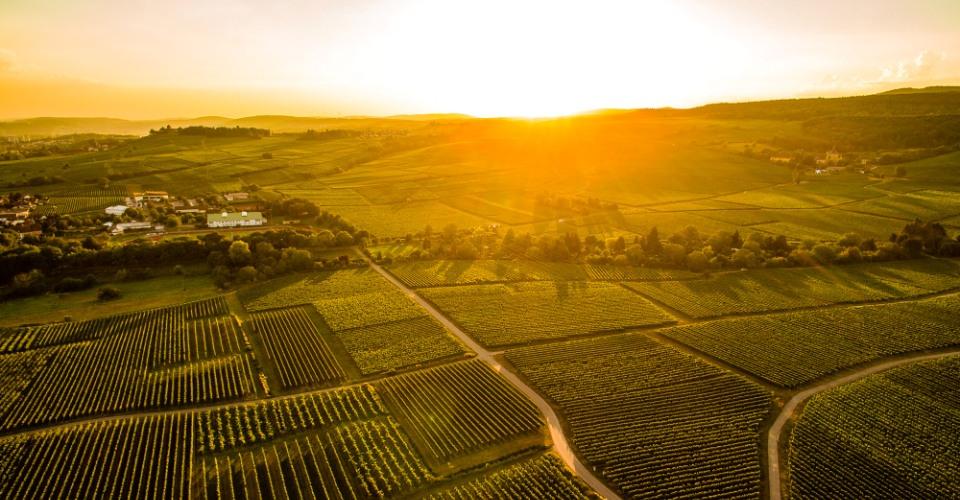 Sonnenuntergang im Rheingau von Moritz Nagel