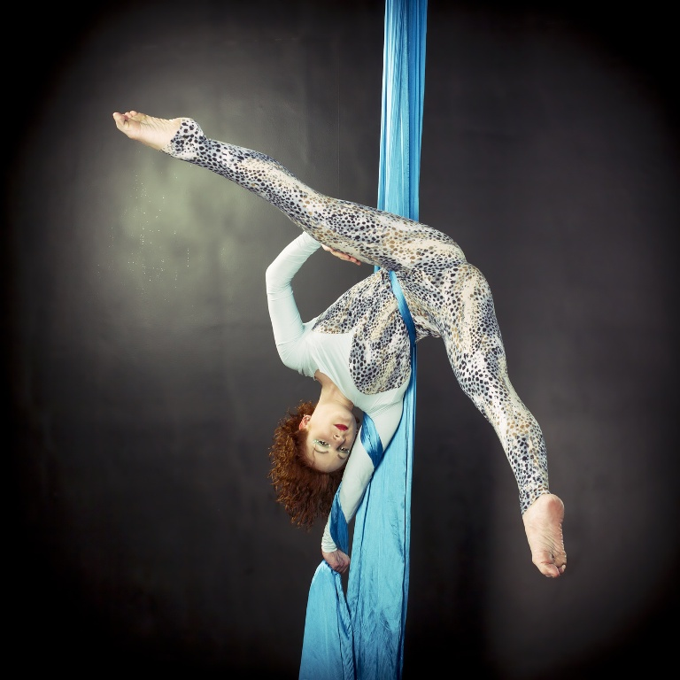 Aerial Silk, Aerial Hoop