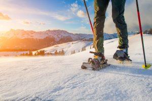 Schneeschuhlaufen, Wintersporttrends