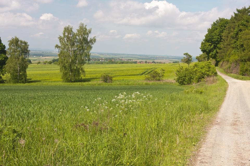 Landschaft am Elm, Elmkreisel