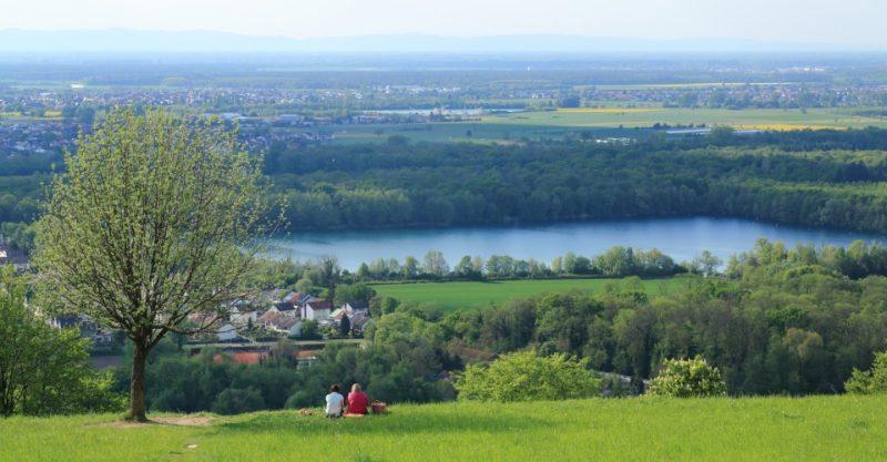 Blick vom Michaelsberg über Untergrombach