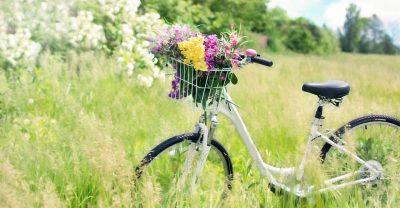 Fahrrad auf Frühlingswiese