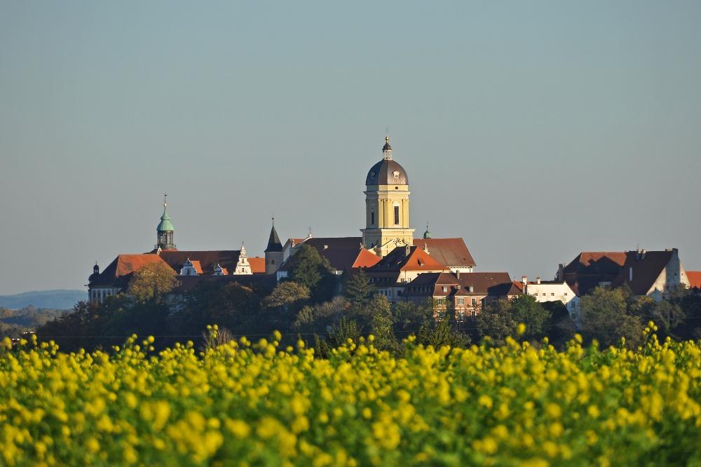 Altstadtblick Neuburg an der Donau, Donaumoos