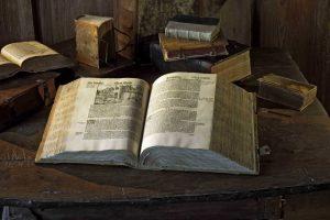 Die Wartburgbibel