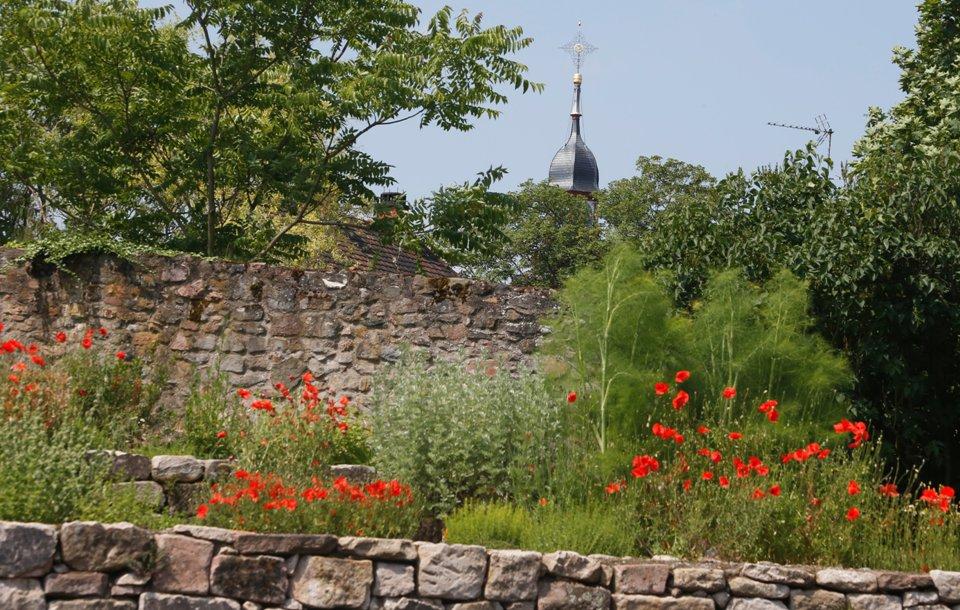 Kräutergarten nach dem Lorscher Arzneibuch