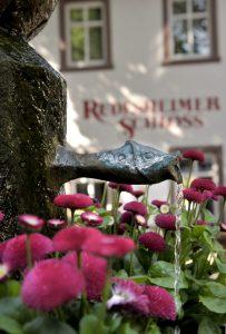 Breuer's Rüdesheimer Schloss, Rüdesheim am Rhein, Garten - Weinhotels