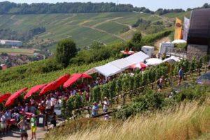 Kochertaler Genießer-Tour durch die Weinberge