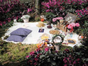Romantisches Picknick